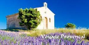 Institut_Vert_gamme_corps_voyages_provencal_tetiere